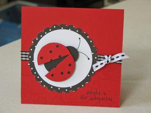 Ladybug_delight